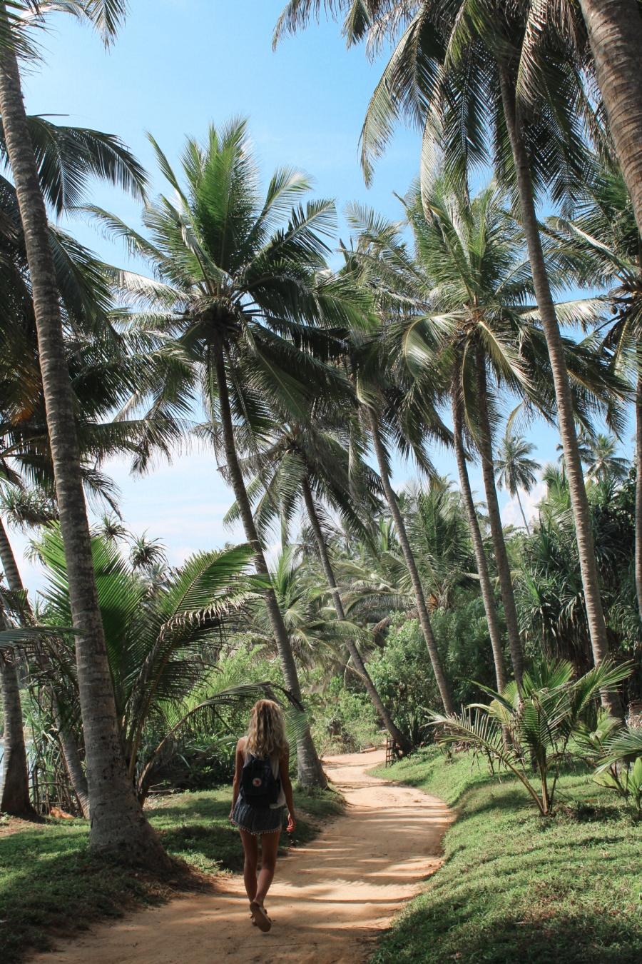 SriLankaBlog-7486