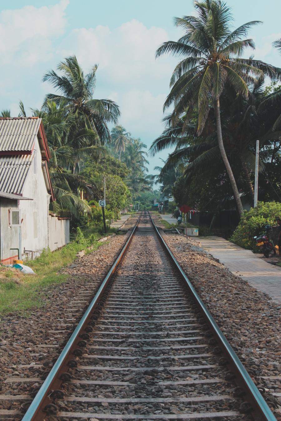 SriLankaBlog-7520