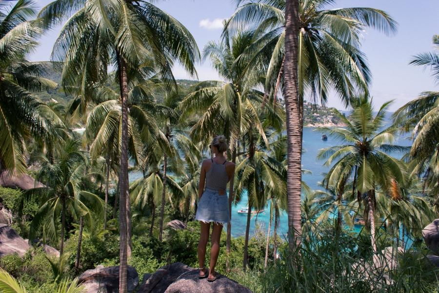 KohTaoBlog JohnSuwanpalms-9904