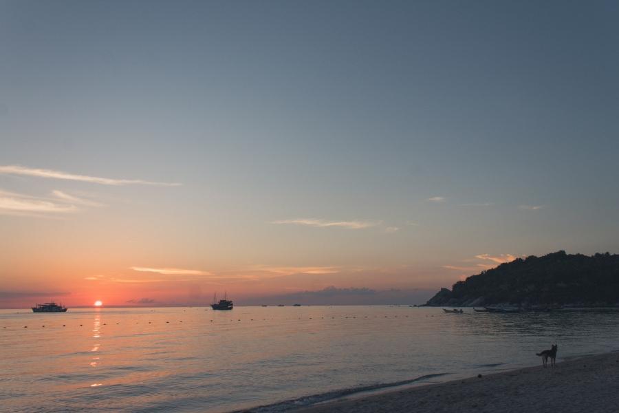 KohTaoBlog Sairee beach-9894